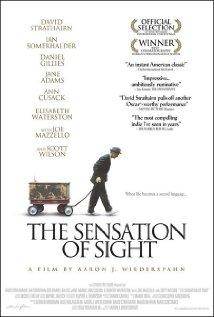 The-Sensation-of-Sight