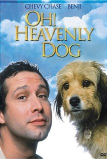 Oh-Heavenly-Dog